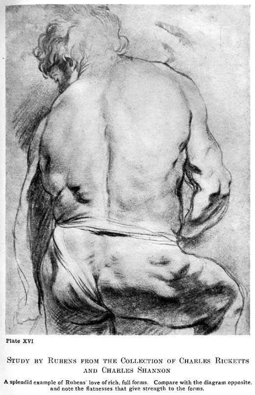 Rubens life drawing