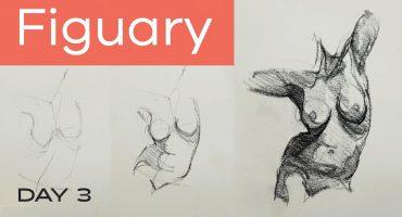 Life Drawing Online | Figure Drawing Classes | Tutorials | Beginners